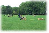 イギリス(だったっけかなぁ?)のどっかの都市公園