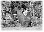 フィリピンにて太平洋戦争の名残