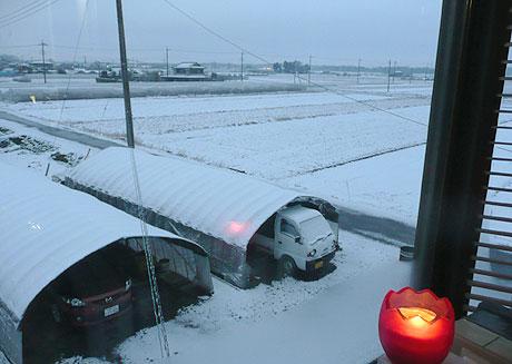 雪、降ってたんですねぇ。。。