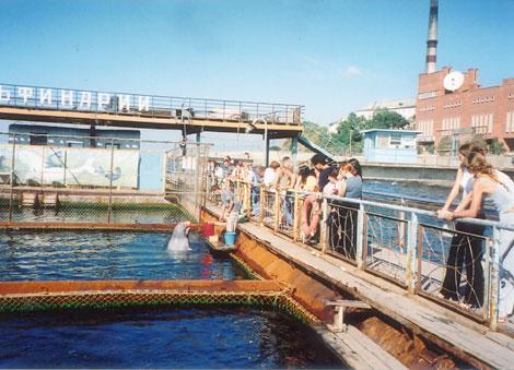 オケアナリウム(水族館)