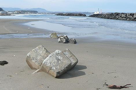 津波で打ち上げられた波消しブロック